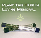 Memorial Tree Seedlings
