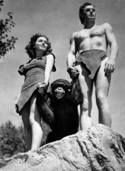 A file photo shows Johnny Weissmuller, right, as Tarzan, Maureen O'Sullivan as Jane, and Cheetah the chimpanzee, in a scene from the 1932 movie Tarzan the Ape Man. (AP Photo/ho, File)
